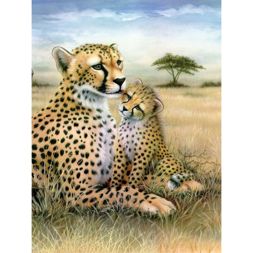 Paint By Numbers Junior small Leopard