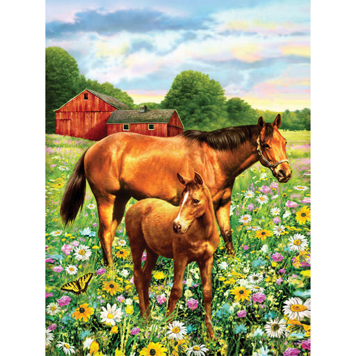 Paint By Numbers Junior small Horse in Field