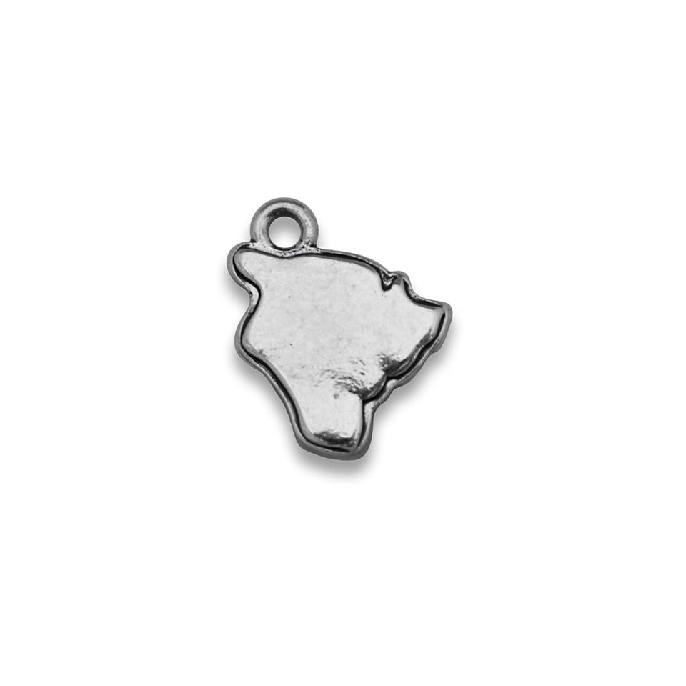 Accent States Hawaii Map Charm