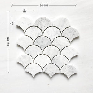 CARRARA BIANCO FAN SHAPE - FISH SCALE DIMENSION