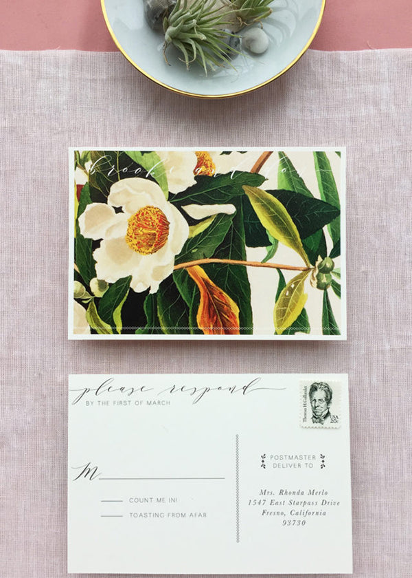 Post Card RSVP Card Destination Mexico Wedding Tulum