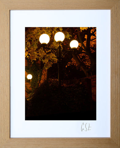 'King's Court, Altrincham, in Autumn' print