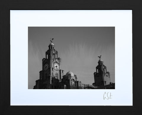 'Sunshine on the Liver Birds' print