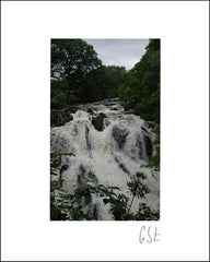 Picture of Swallow Falls