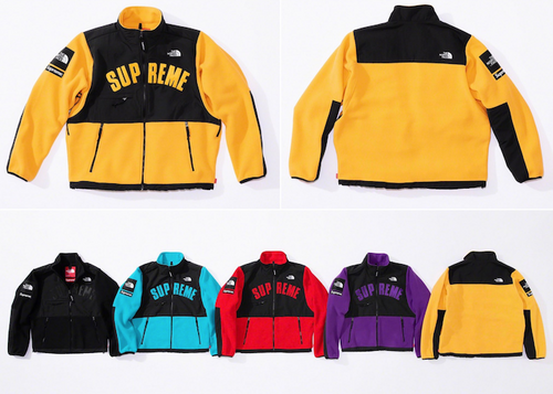 PREORDER SUPREME NORTH FACE DENALI ARC LOGO FLEECE JACKET (2019S/S)