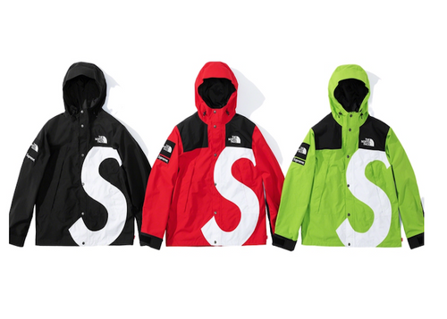 SUPREME NORTH FACE S LOGO MOUNTAIN PARKA (2020FW)