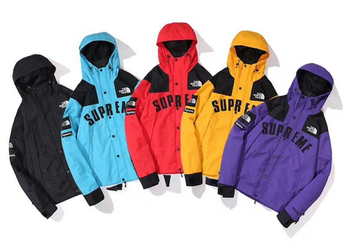 SPECIAL SUPREME NORTH FACE ARC LOGO MOUNTAIN PARKA (2019SS)