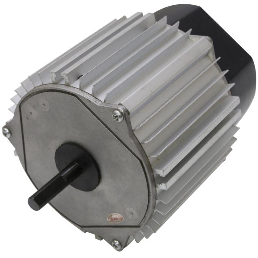 Motor for 18 In. Evaporative Coolers