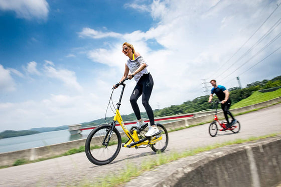 BRIZON TITAN-3 20 inch STEPPER BIKE
