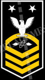 Aviation Electronics Technician (AT) Master Chief White Gold