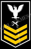 Cryptologic Technician (CT) U.S. Navy Rating Badge Insignia First Class White Gold