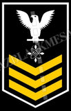 Data Systems Technician (DS) U.S. Navy Rating Badge Insignia First Class White Gold