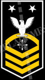 Data Systems Technician (DS) U.S. Navy Rating Badge Insignia Master Chief White Gold