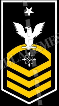 Data Systems Technician (DS) U.S. Navy Rating Badge Insignia Senior Chief White Gold