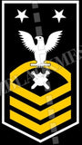 Explosive Ordnance Disposal Technicians (EOD) U.S. Navy Rating Badge Insignia Master Chief White Gold
