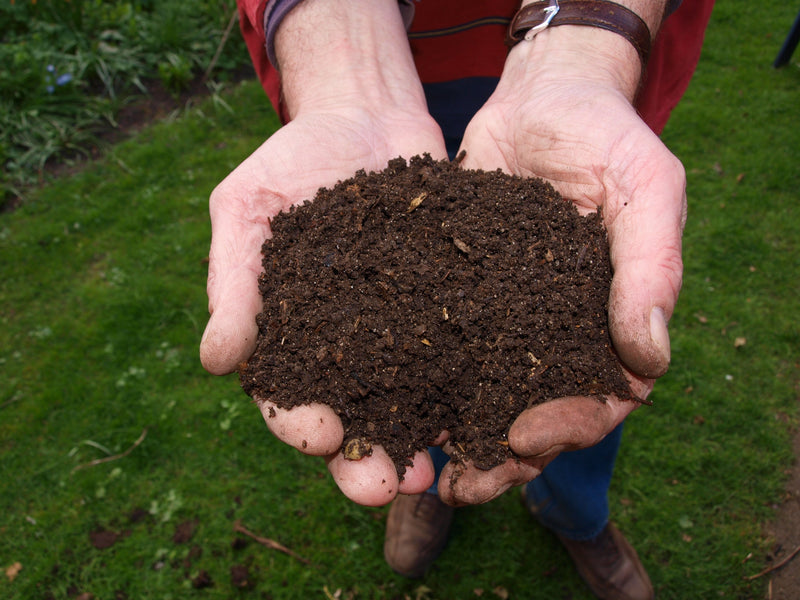 Getting Started with Composting in 2020