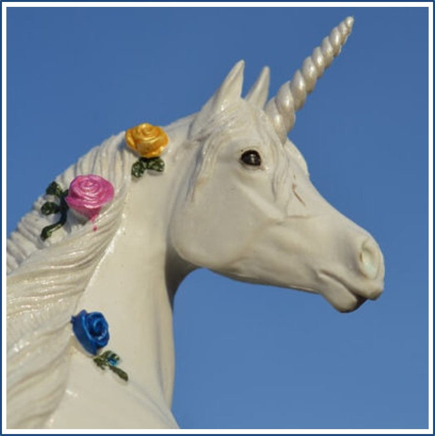 Why Are Unicorns So Popular?