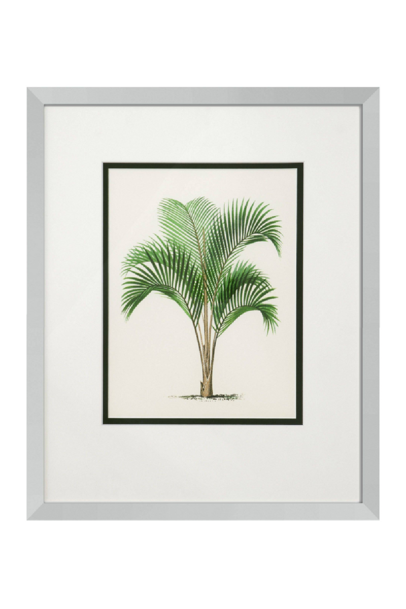 Eichholtz Palms Print (set of 4)