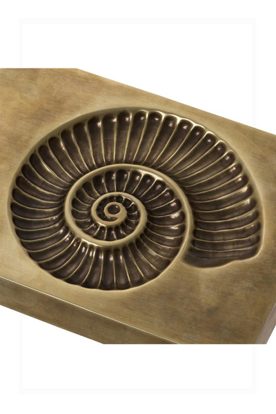 Shell Fossil | Eichholtz Contra | OROA Modern & Luxury Furniture