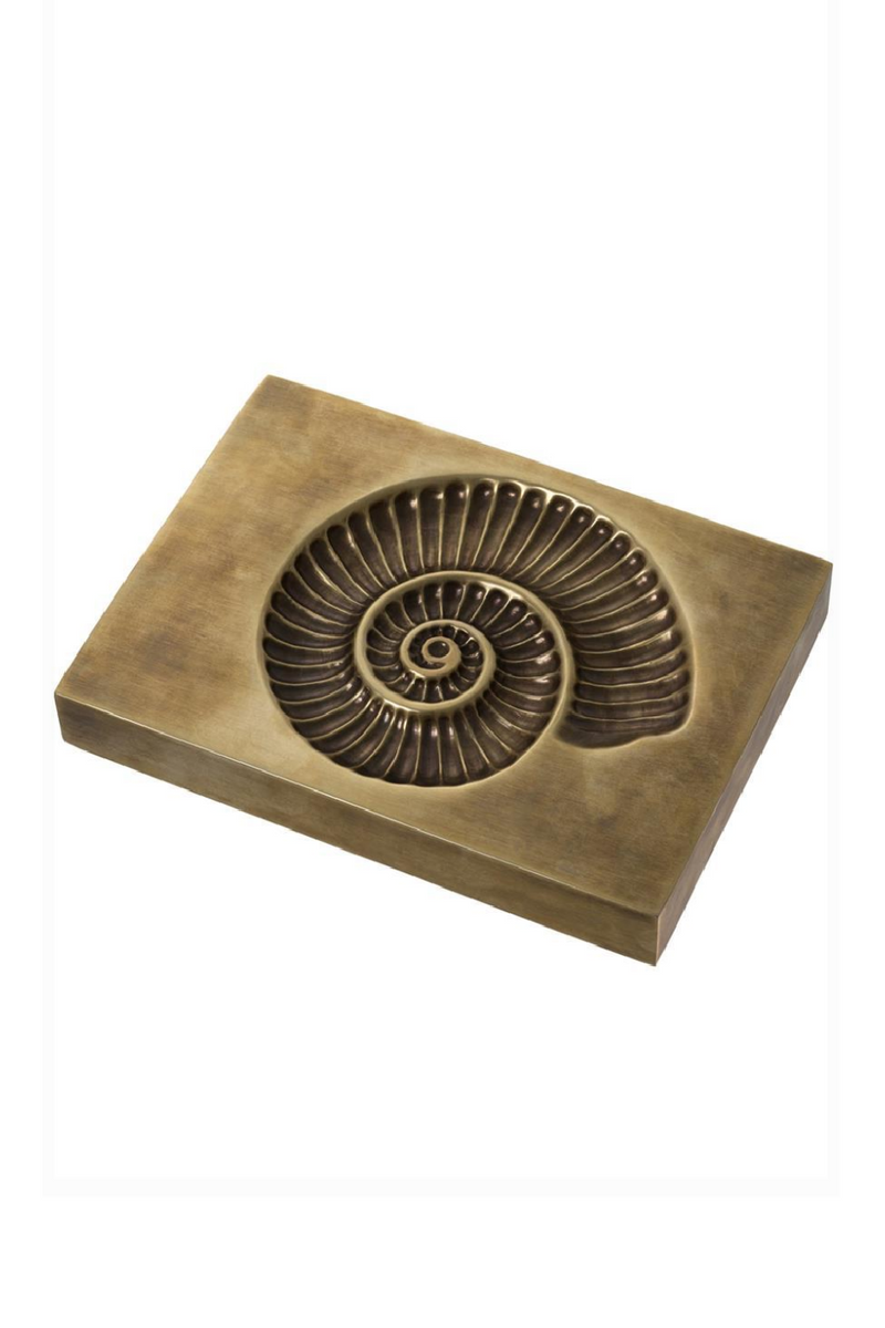 Shell Fossil | Eichholtz Contra