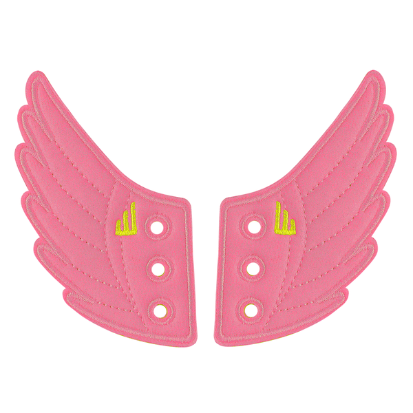 Awareness Pink Wings