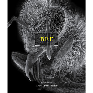 BEE Rose-Lynn Fisher