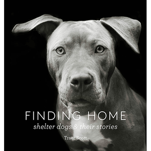 Finding Home Traer Scott