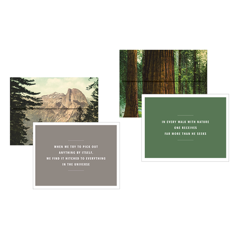 John Muir Notecards Princeton Architectural Press