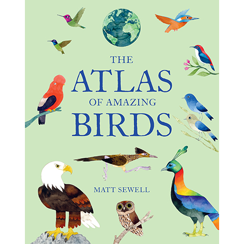 The Atlas of Amazing Birds Matt Sewell