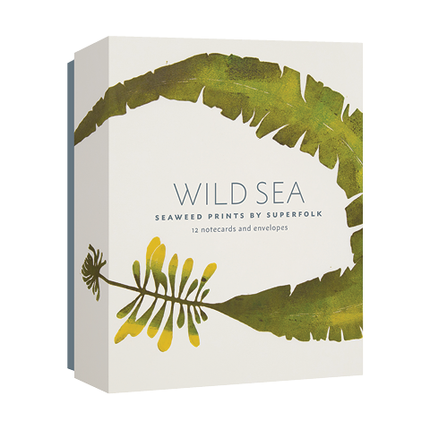 Wild Sea Notecards Superfolk