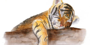 International Tiger Day: What You Can Do To Help Raise Awareness