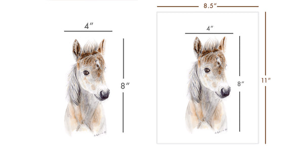 Framing Artwork: Part 1 - Understanding Sizes and Dimensions
