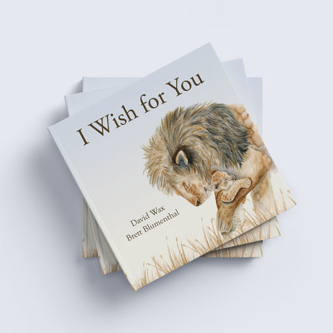I Wish for You by David Wax and Brett Blumenthal