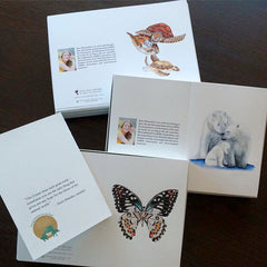 Wildlife Conservation Cards