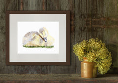Sleeping Baby Duck Animal Art Print