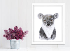 Framed Baby Koala Animal Print