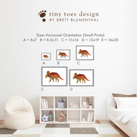Size Guide for Horizontal Unframed Nursery Prints