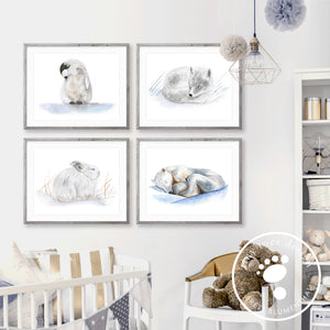 Arctic Baby Animal Print Set for Nursery