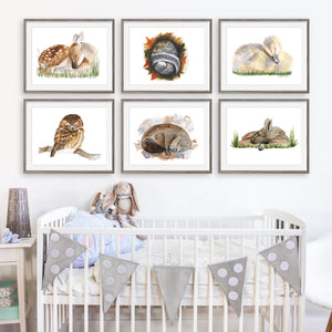 Sleeping Woodland Baby Animal Prints