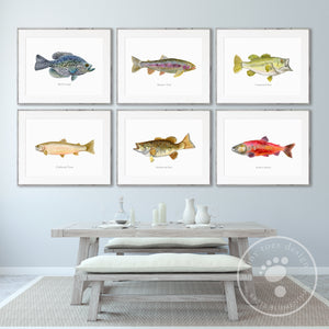 Fish Watercolor Print Set