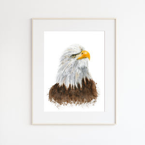 Bald Eagle Watercolor Portrait