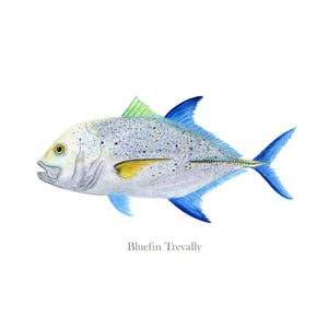 Bluefin Trevally Wall Art