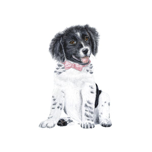 Border Collie Puppy with Pink Bowtie Nursery Decor