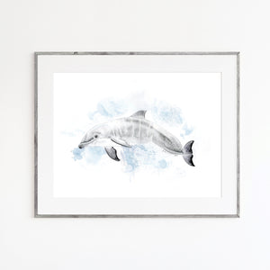 Baby Dolphin Watercolor Print