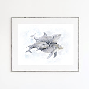 Dolphin Family Watercolor