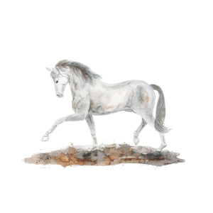 Arabian Horse Dressage Watercolor