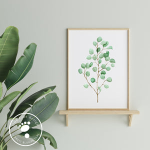 Eucalyptus Kitchen Decor