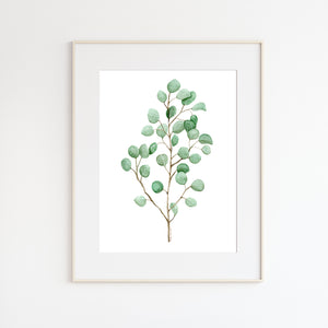 Eucalyptus Watercolor Art