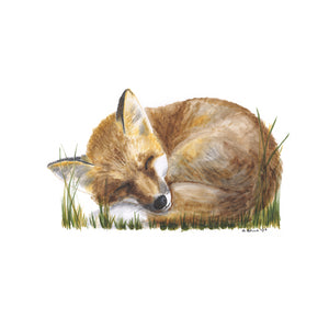 Sleeping Baby Fox Nursery Print