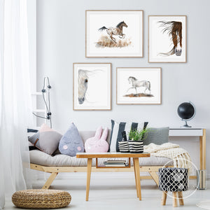 Horse Gallery Wall Art